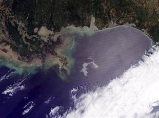 Vertido de petróleo en el golfo de México por BP